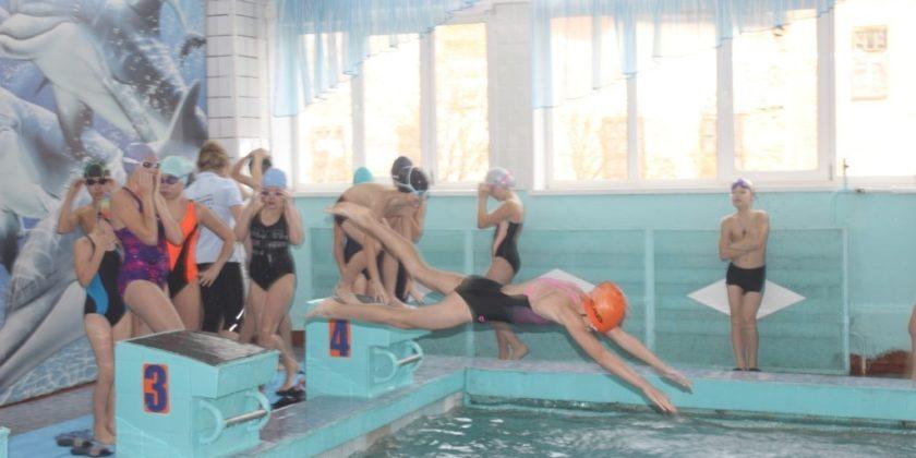 спорт плавание Верхний Уфалей